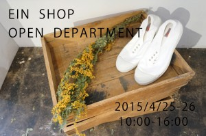 DSC06146ein